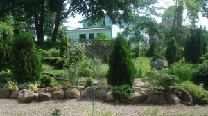 Mieszkanie Lubin widok z kuchni na ogród